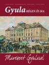 Gyula régen és ma VI. kötet – Művészet Gyuláról
